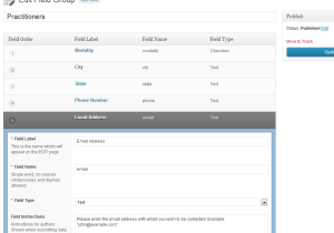 Screenshot of the Advanced Custom Fields Plugin in Action