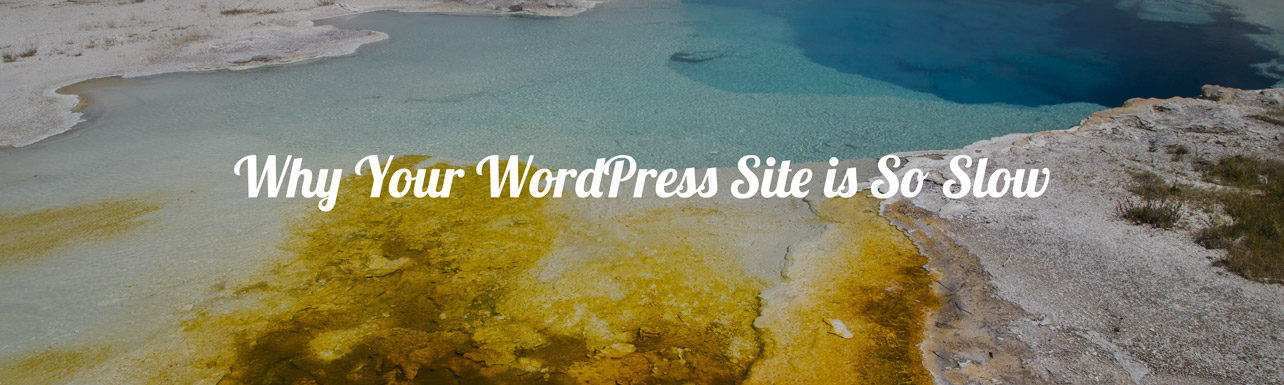 Headline for the blog post on Why Your WordPress Site is So Slow